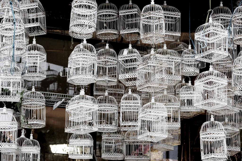 2016-03-Life-of-Pix-free-stock-bird-cages-white-LEEROY_pe