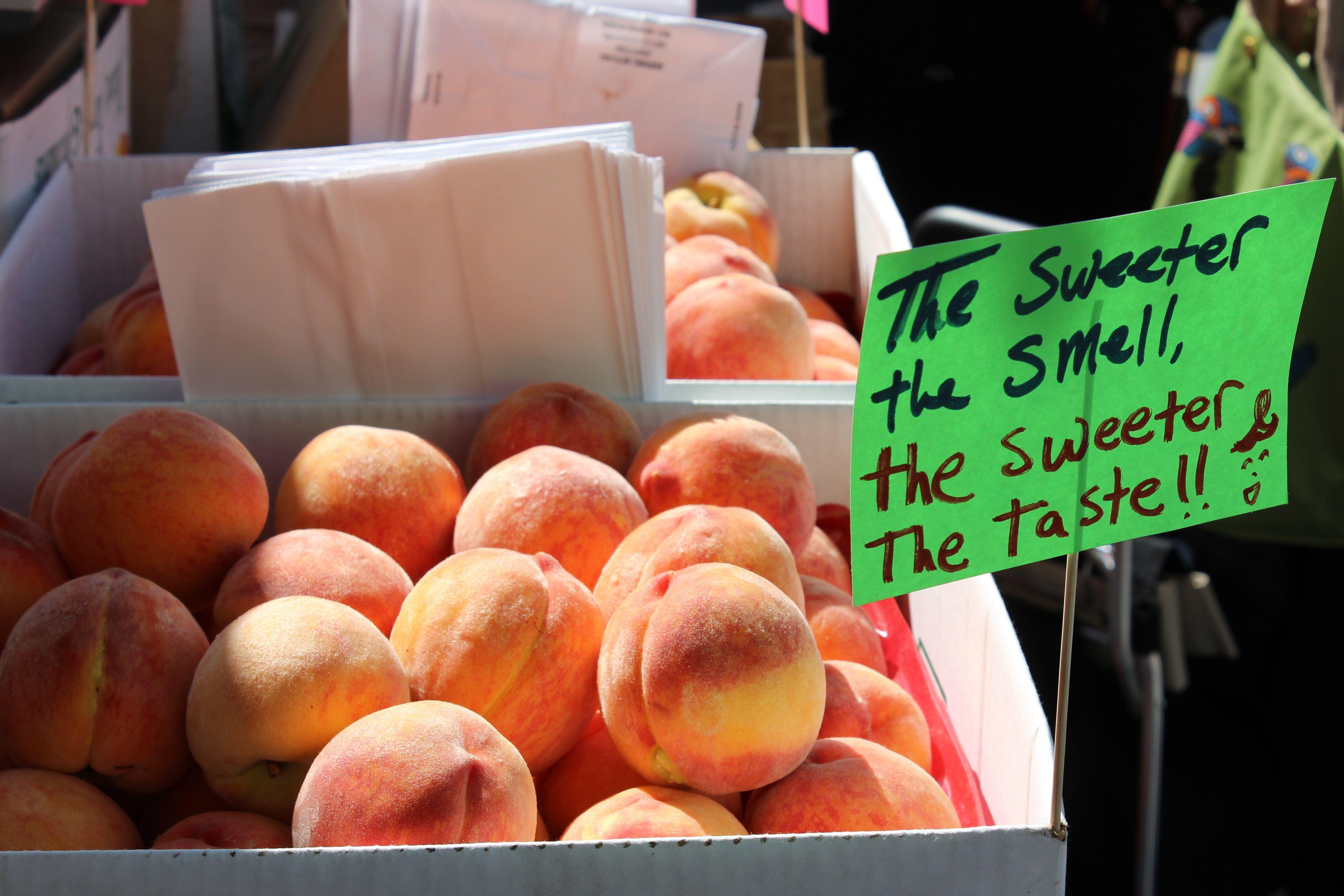 peaches-1329026_pe